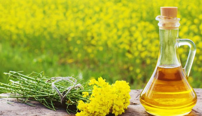 mustard oil amazing benefits in hindi