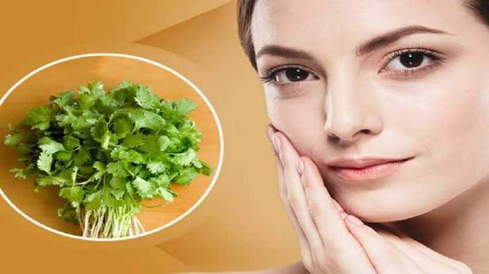 Coriander Leaves For Glowing Skin